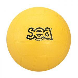 ballon de volleyball educatif